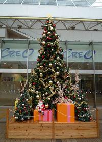 クリスマス特集2009  西武 クレオ前のクリスマスツリー