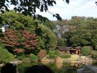 庭園茶室ツアー