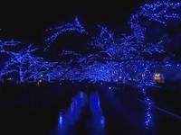 青の洞窟イルミネーション見てきました!