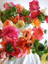 2月の出店予定(Sunday Bouquet)