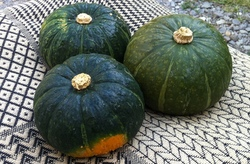 つぼ焼きかぼちゃ