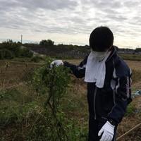 11/12 西崎さんち