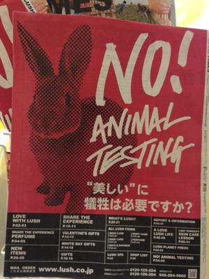 動物実験反対