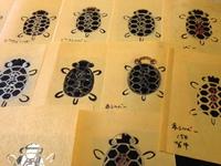 13匹の亀が誕生しました。