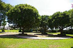 大越児童公園