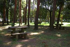 かつらぎ公園