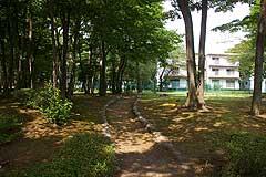 小野崎西児童公園