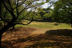 白畑児童公園