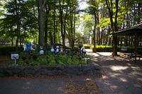 まつぼっくり公園