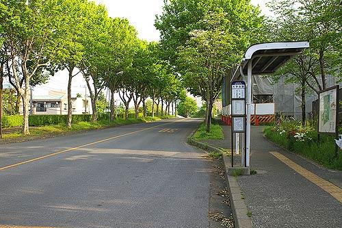 筑波大学内バス停