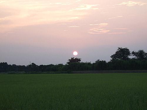 つくば市玉取からの夕陽
