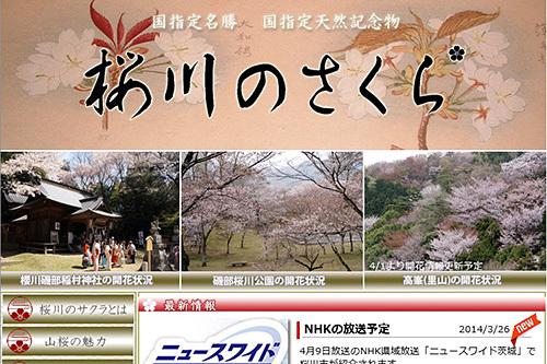 日本一苦労しながら開花情報を更新し続けている人のはなし