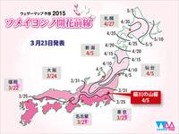 2015サクラ前線…東京で平年より3日早くソメイヨシノが開花!!