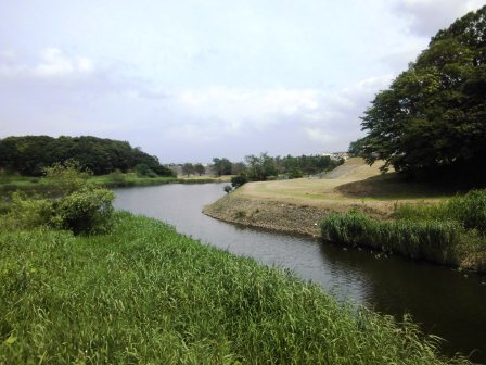 龍ヶ崎ニュータウンの破竹川沿いを散策!