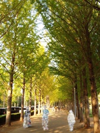 科学万博記念公園の秋!