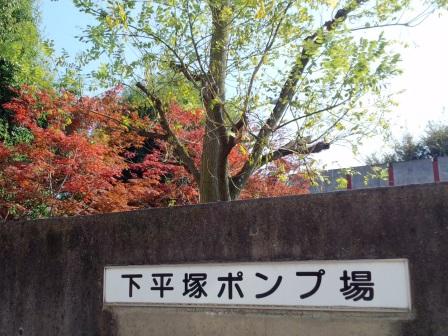 2013年秋、研究学園都市で紅葉を見る!