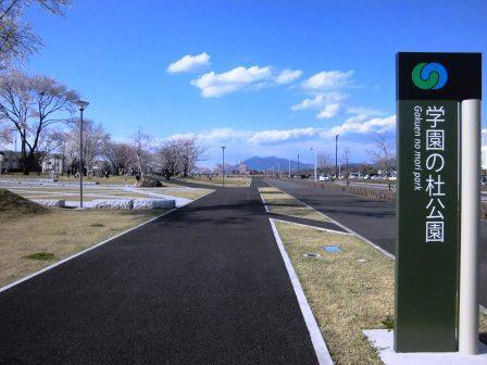 【2014年桜シリーズ】学園の杜公園で初めての花見!