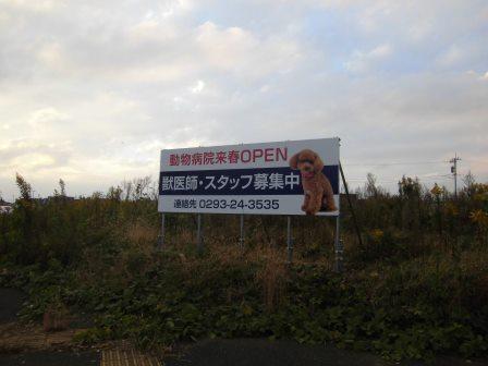 学園の森中央交差点そばに「来春動物病院オープン」の看板が!
