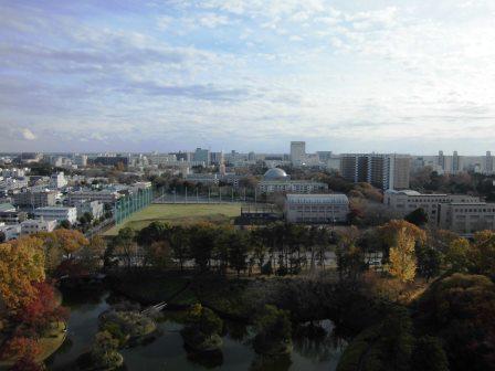 松見公園展望塔から紅葉を眺める!