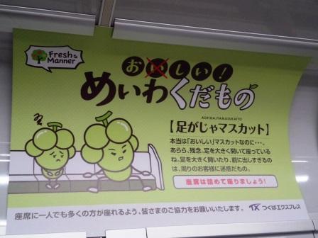 TXのマナー広告「めいわくだもの」シリーズ「足がじゃマスカット」が掲示されている!