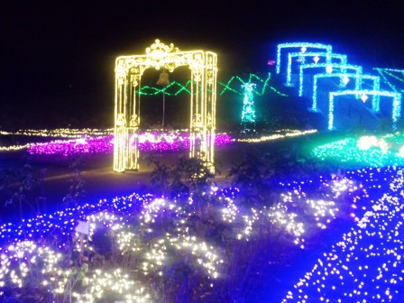 茨城県フラワーパークのイルミネーションに行ってきた!
