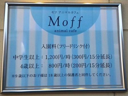イーアスにできたアニマルカフェ「Moff」!