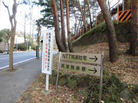 竹園のNTT社宅跡地が売却されていた!
