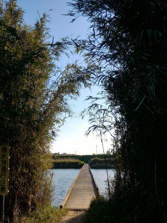 2017年GW小さな旅(2) 小貝川に架かる沈下橋「小目沼橋」を渡ってきた!