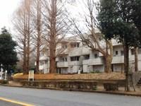 筑波大のアリーナ建設予定地が吾妻の職員住宅の場所に決まった!