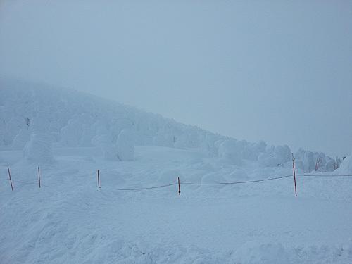 山形蔵王温泉スキー場にいってきました。