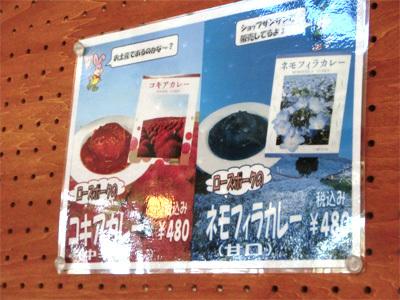 【ひたち海浜公園】でネモフィラカレーを食す!