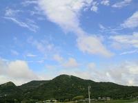 嵐の後・・ 2011/05/30 12:28:58