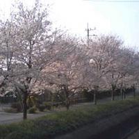 2009年04月10日