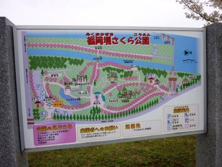 福岡堰さくら公園に行ってきました!