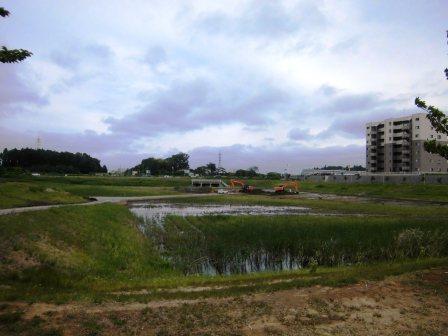 葛城川調節池が整地されてしまっている!