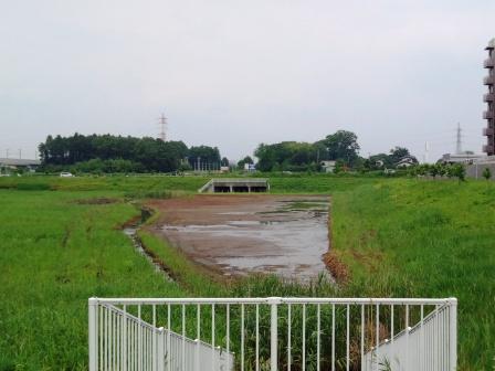 葛城川調節池の工事後の状況!