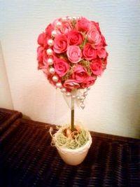 バラのトピアリー