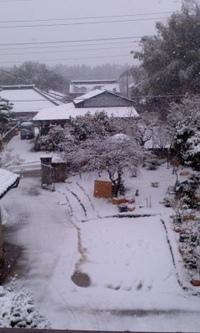 雪国のよう 2012/02/29 13:30:32