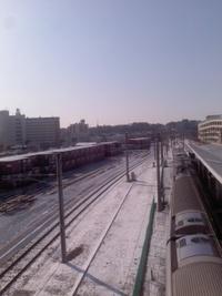 雪の翌日 2013/01/15 10:11:28