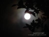 今夜は、スーパームーン 2012/05/06 04:36:33