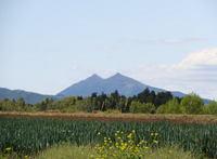 筑波山もよく見えます
