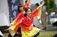 札幌YOSAKOIソーラン祭り 感想*シスコ