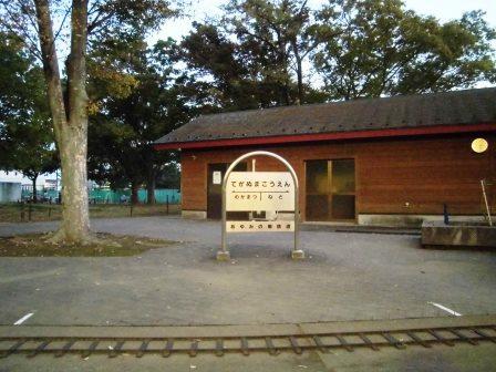 夕方の手賀沼公園を散策!