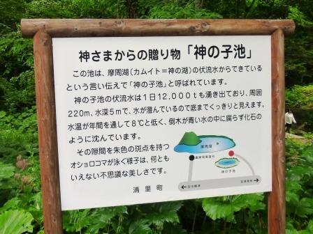 2012年北海道旅行(14) エメラルドグリーンの水を湛える神の子池!