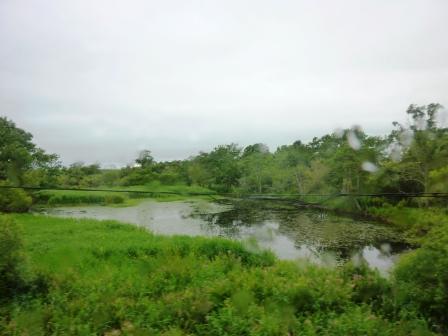 2012年北海道旅行(16) ノロッコ号に乗ってのんびりと釧路湿原を眺める!