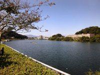 2015年関西旅行(13) 瀬田川リバークルーズで琵琶湖の風を感じる!