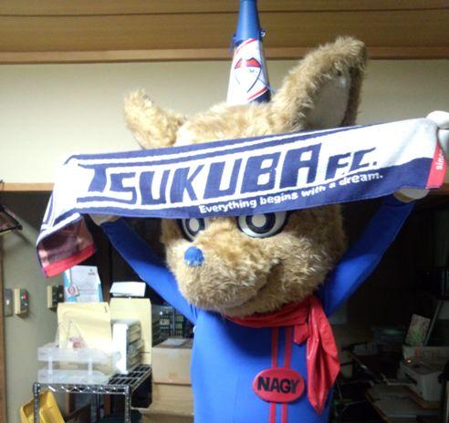 つくばサッカーフェスティバル2013