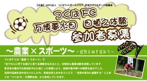田植え体験 参加者募集!
