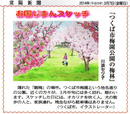 常陽新聞・梅園公園の梅林