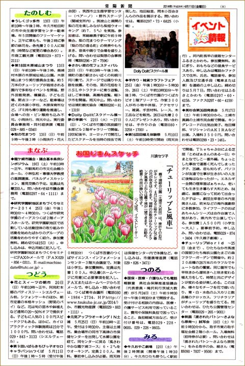常陽新聞・霞ヶ浦総合公園のチューリップ